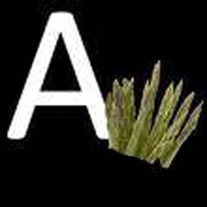 تغذیه بر اساس گروههای خونی  بخش اول - گروه خونی A