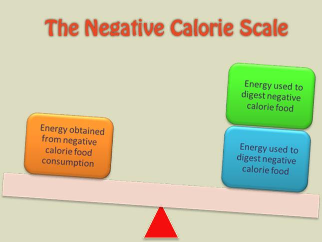 غذاهایی با کالری منفی ، کالری منفی ، رژیم ، کرفس ، کلم ، خیار،کاهو ،