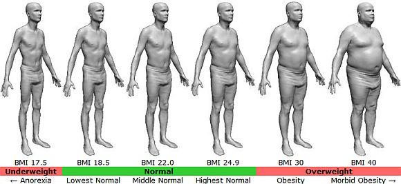 چاقی چیست و چگونه محاسبه می شود ؟