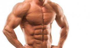 پروتئین و افزایش حجم