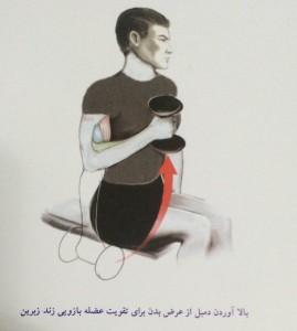 بالا آوردن دمبل از عرض بدن برای تقویت عضله بازویی زند زبرین