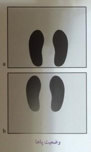 وضعیت پاها در حرکت پرس پا