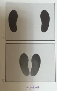 فاصله پاها در حرکت پرس پا