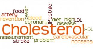 افسانه کلسترول ! کلسترول ضرر ندارد ، با خیال راحت کلسترول بخورید